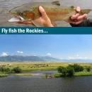 Fliegenfischerreise Montana USA individuell