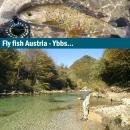 Fliegenfischerreise Österreich Ybbs