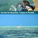 Fliegenfischerreise Belize