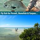 Fliegenfischerreise Mexico